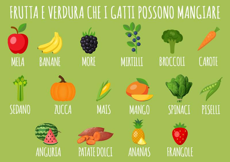 animigo-it-frutta-e-verdura-che-i-gatti-possono-mangiare