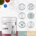 /images/product/thumb/l-lysine-6-it-new.jpg