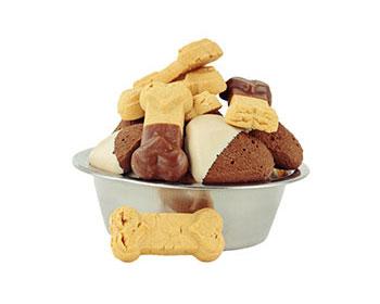 Che effetto hanno i dolci al cioccolato nei cani?