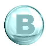 La Vitamina B per i cani